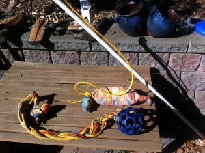 Homemade Flirt Pole and Tug Toy. No big bucks spent here folks!