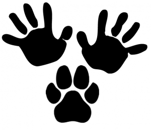 Hands:Paws